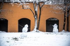 Snowmen separated at birth