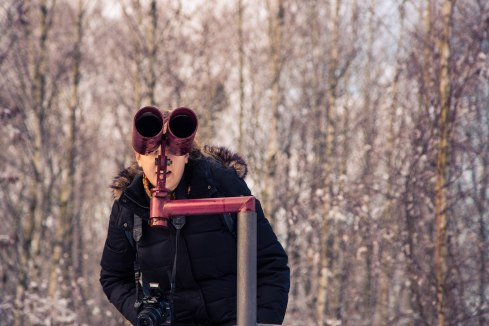 Winter goggles