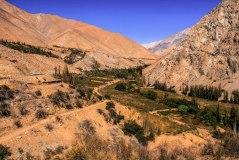 Pisco Elquí valley