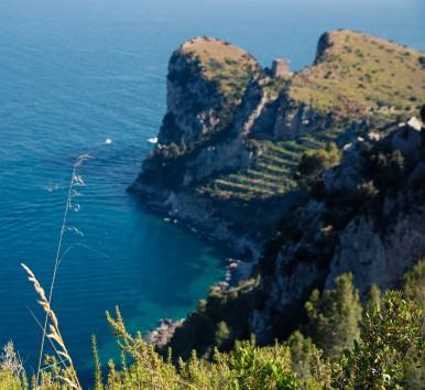 Natural Marine Reserve of Punta Campanella